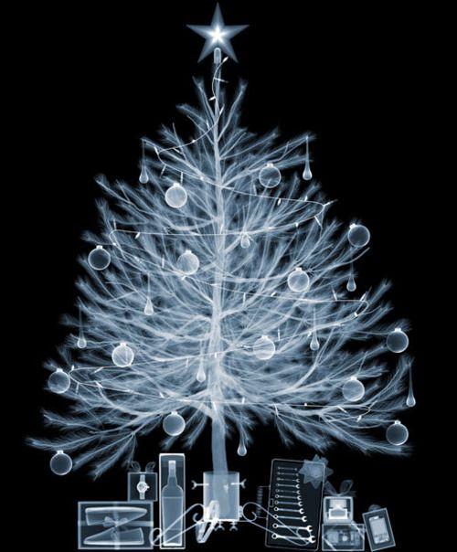 Xray tree...would make a neat Christmas card