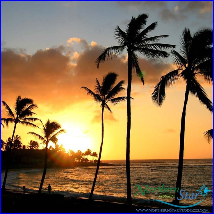 Hawaii is not a state of mind, but a state of grace.  https://northernstarproducts.com/    #hawaiiisland #NorthernStarProducts #Beauty #Cosmetic #GerardCosmetics #MudCosmetics #Lipstick #FacePowder #SettingSpray #TeethWhitening #Hyda-Matte #love #happy #cute #happy #fashion #girl #style