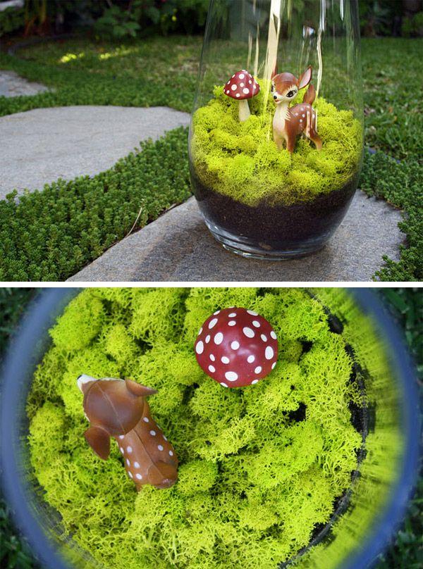 Terrarium de noël | Cherry Plum