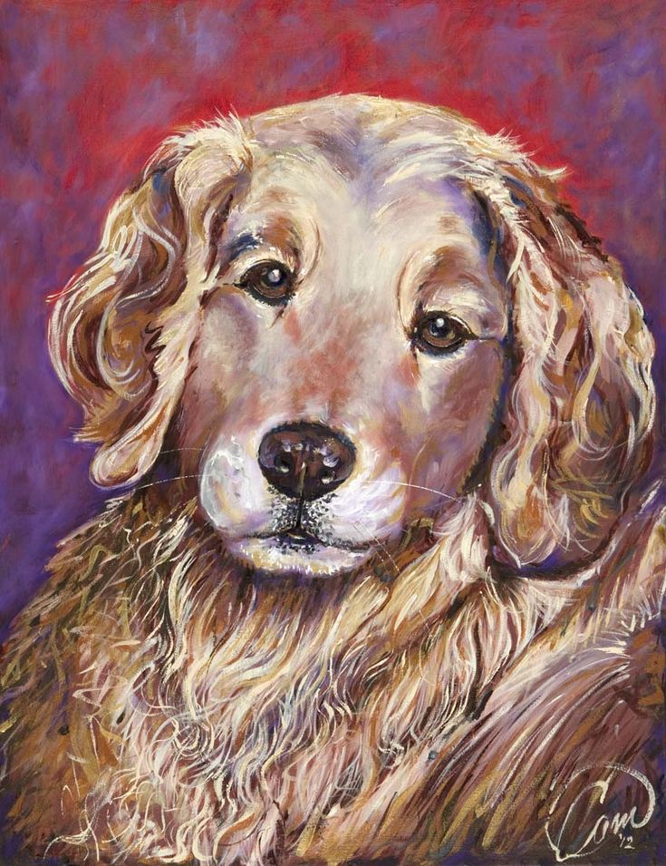 Cassie a beautiful golden retriever. Oil on panel with gold accent.