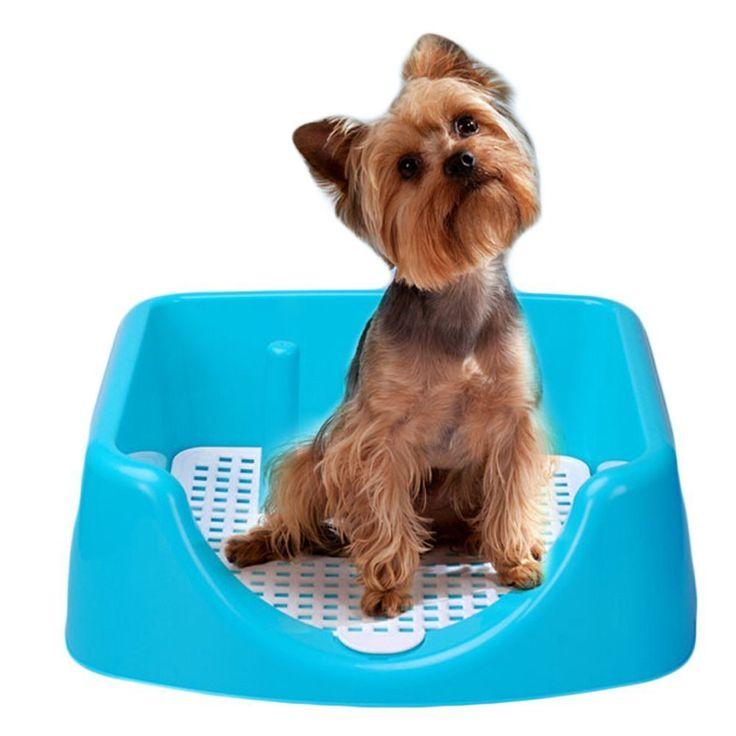 Best 20+ Dog Toilet Ideas On Pinterest