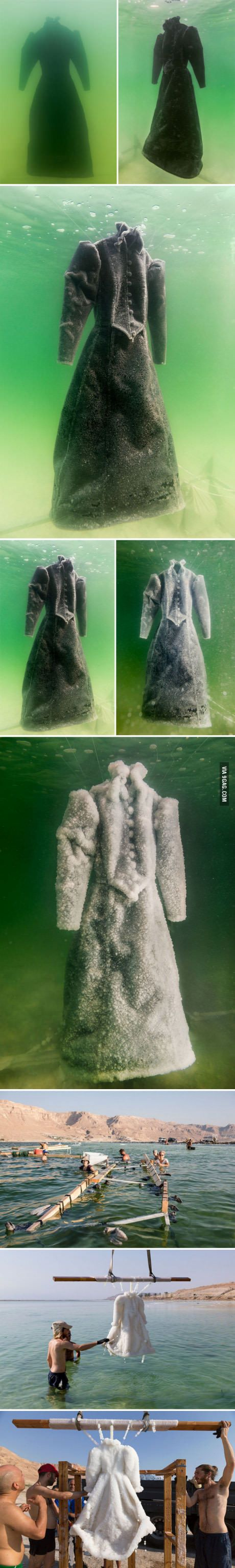 Artist leaves a dress in the Dead Sea for two years