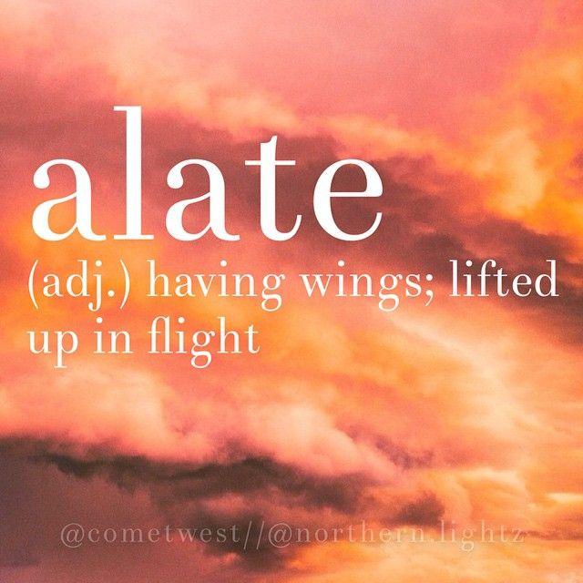 •English• \\a-'lAt\\