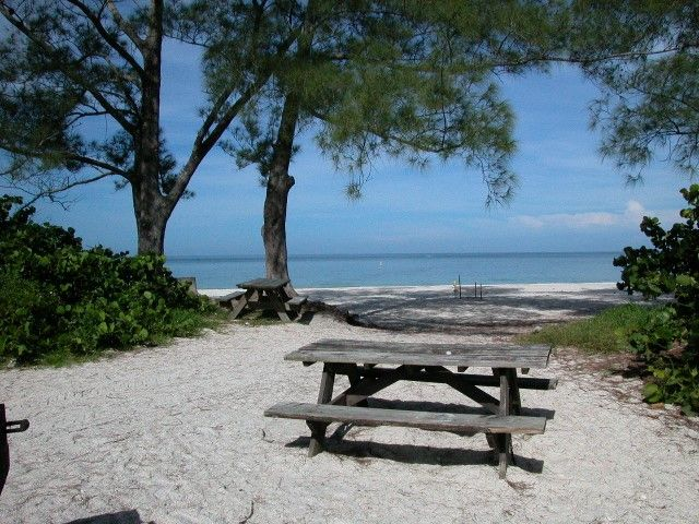 beachhunter shows you what the naples beaches are really like find this pin and more on florida state parks