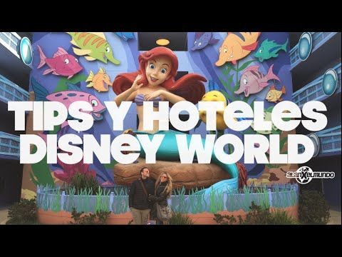 Tips y hoteles en Disney World   Disney World #1