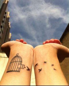 Aves saliendo de jaula