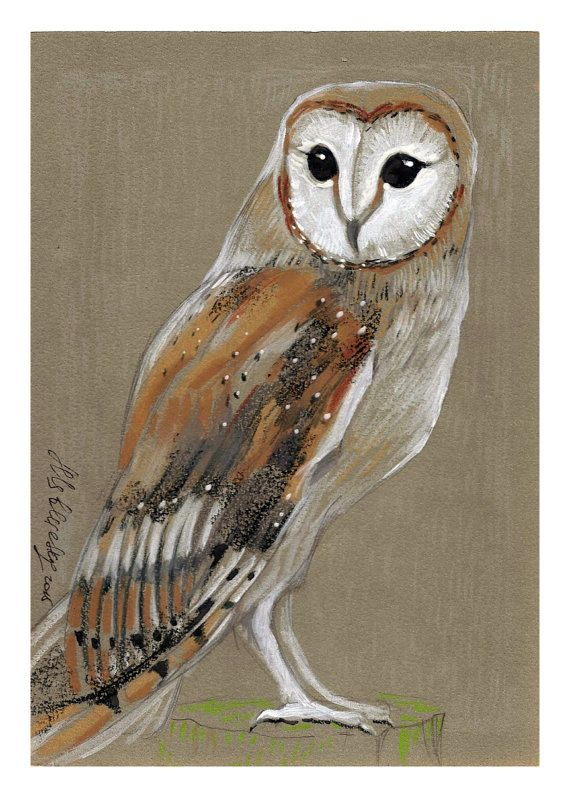 Barn Owl - Original mixe media Painting 6x8 inches Bird Winter Snow