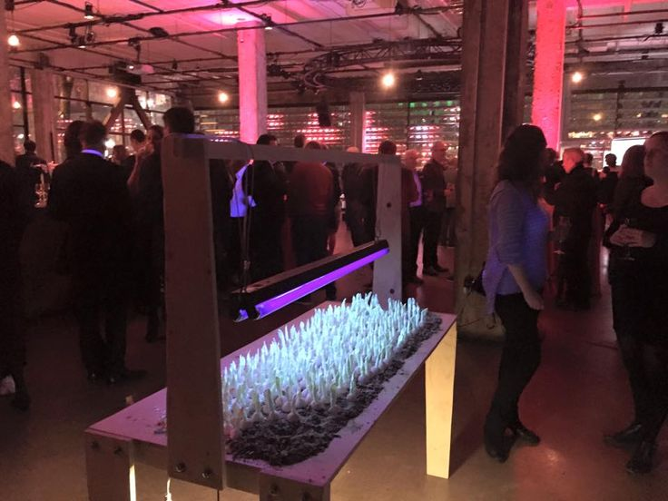 Montreal Society of technology art. Benefice party. www.ui-da.com #foodhapiness, #fooddesign, #delphinehuguet, #uisworld, #designculinaire