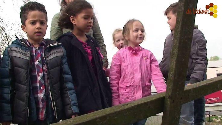 Kinderen van t startblok bezoeken de Lindense molen te Katwijk | Filmpje van wijktv de Valuwe