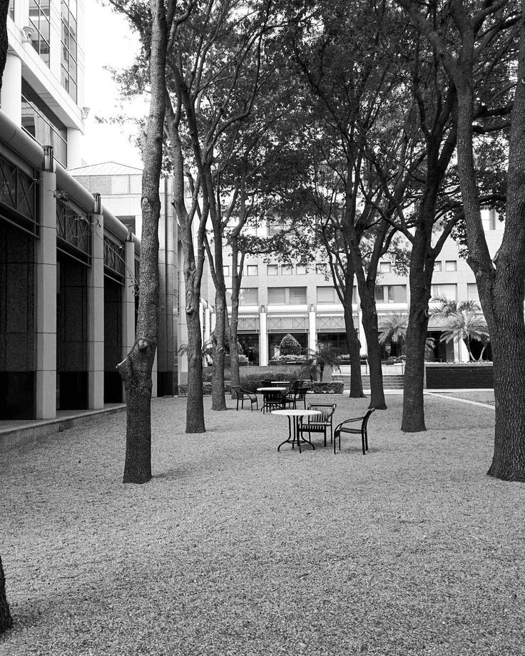 Nice place to hang and have a nice #lunch in #downtown #orlando #florida #streetphotography #park #my_365 #365photochallenge #day296