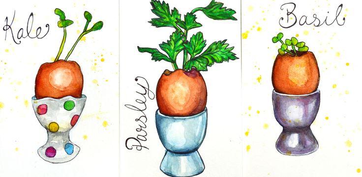 Garden Illustrations - Weeks 2-3 Germination Test - Artfully Creative Life