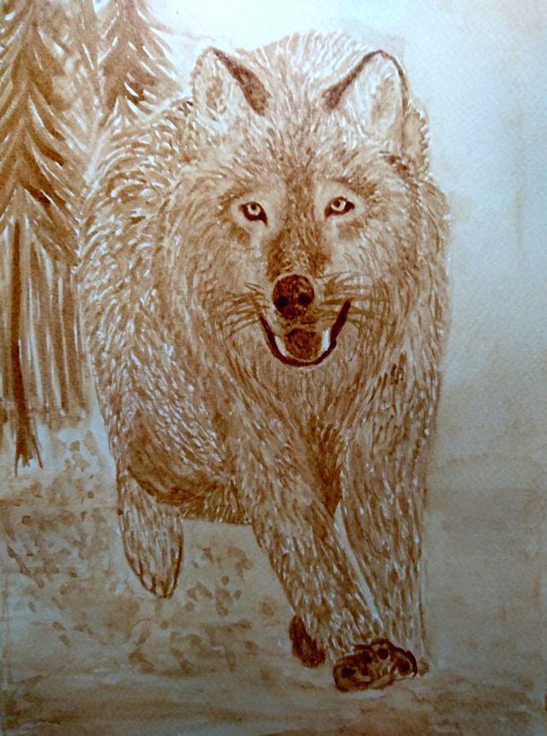 Coffee painting - Wolf #kavefestmeny #coffeepainting #kaffeemalerei #wolf