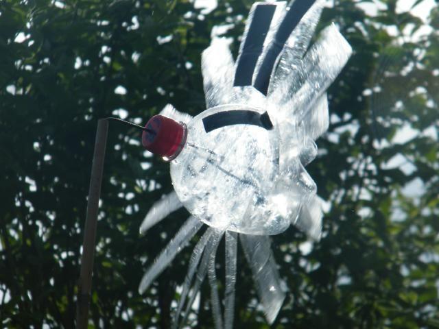 8 best rubbish science plastic bottle bird scarer images ...