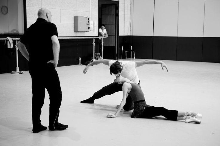 2015 Alice Blangero for Ballets de Monte Carlo — Жан-Кристоф Майо, Ольга Смирнова и Артем Овчаренко репетируют в студии Балета Монте-Карло