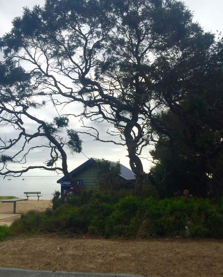 Blairegowrie.. Mornington Peninsula.. Photo taken by Andrea Crossan