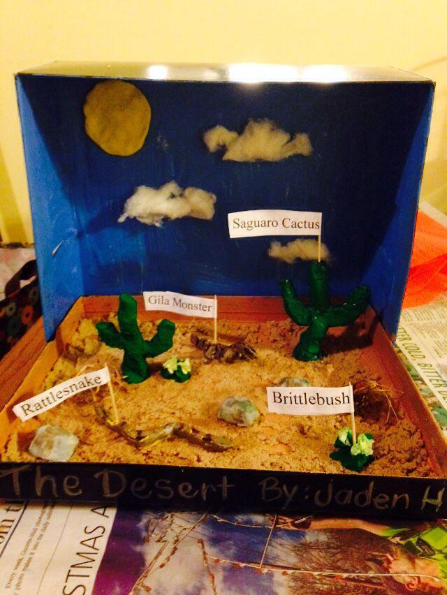 Desert Biome Box