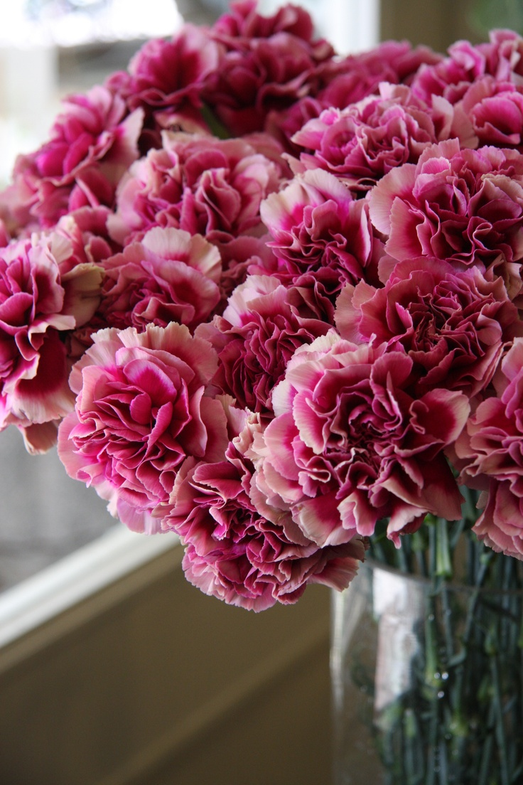 37 best Carnation Flower Arrangements & Bouquets images on Pinterest ...