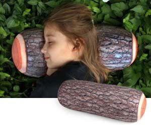 Log Pillow. Very cool website as well. Lots of neat stuff!
