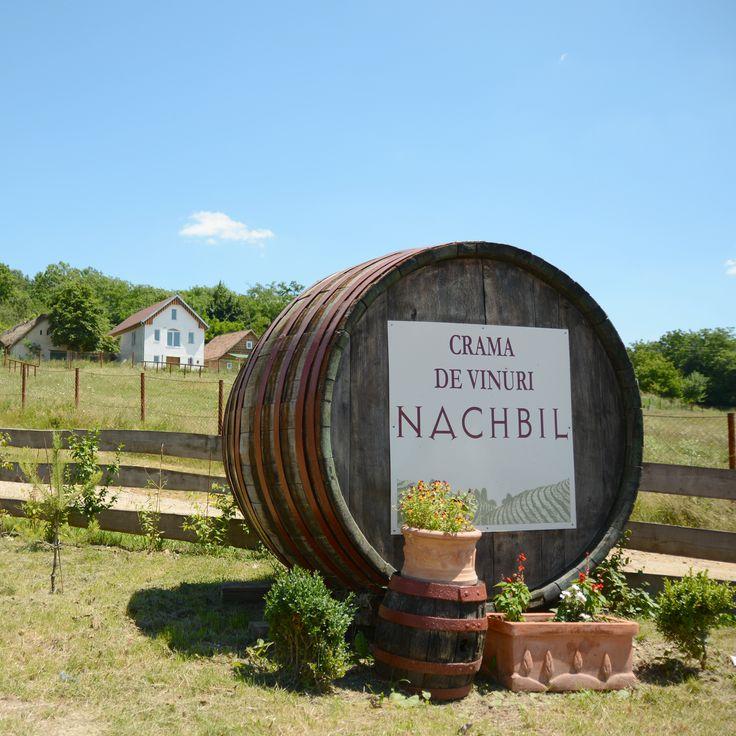 Crama Nachbil in Beltiug http://winesylvania.com/wineries/2015/10/10/crama-nachbil-in-beltiug