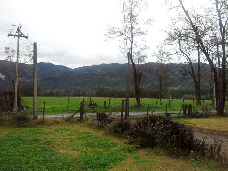 Codegua, sector Tunca. Foto de Juan González F.