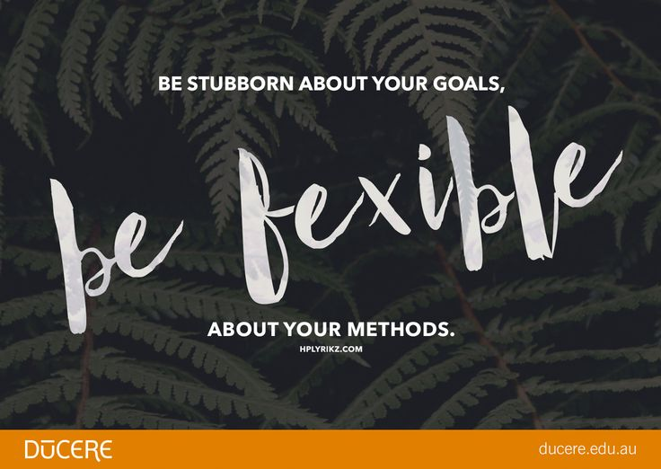 """Be stubborn about your goals, be flexible about your methods."" Hplyrikz.com"