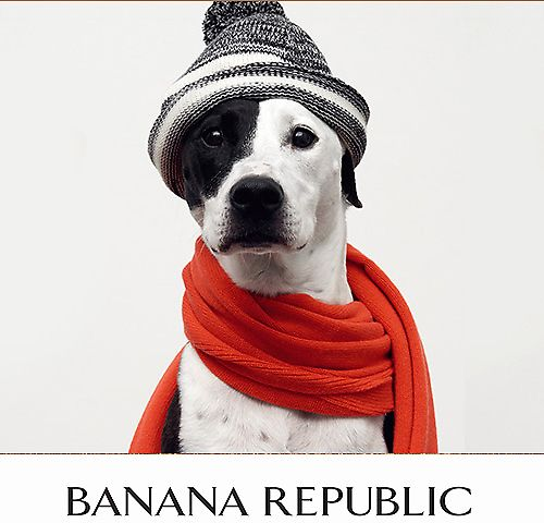 Extra 30-40% Off Banana Republic Purchase (Online & Today Only)