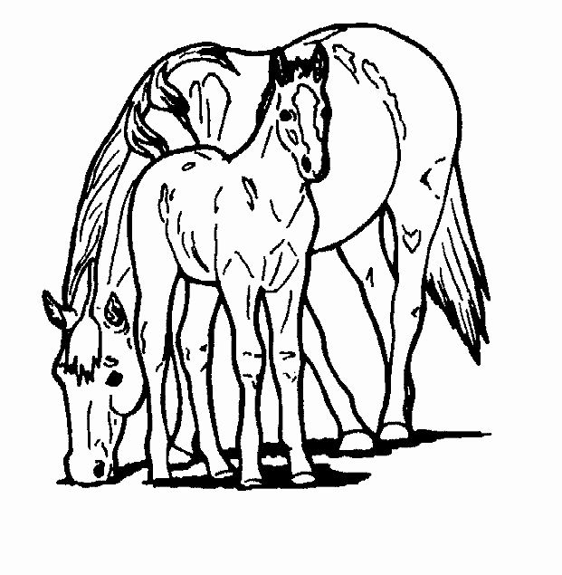 21 Horse Coloring Pages Printable Hellboyfull Org Horse Coloring Pages Horse Coloring Easy Coloring Pages