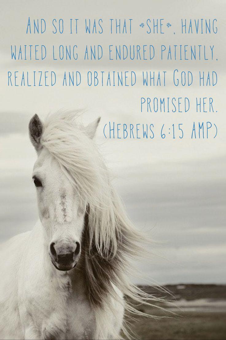 #promises #waitpatiently #bestphoto #bestscripture #amen #madeitmyself…