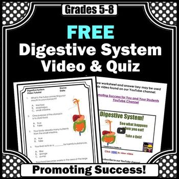 Digestive system worksheet with answer key