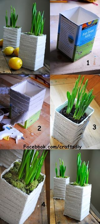 Milk cartons make perfect indoor flower pots and can be decorated accordingly.