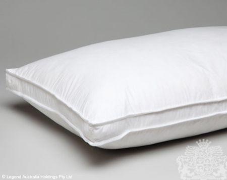 Logan & Mason 100% Feather Pillow (pack of 2)