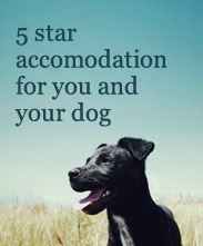 Our Luxury holiday home is a 5* accommodation for both you and your dog! Come experience North Devon with us