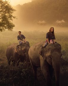 Ride an elephant. Preferably while visiting the Elephant Nature Park rescue and rehab organization in northern Thailand.