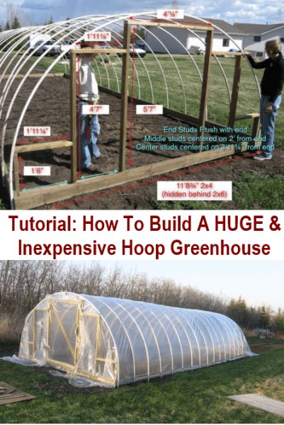 DIY Huge & Inexpensive Hoop-Style Greenhouse                                                                                                                                                                                 Mais