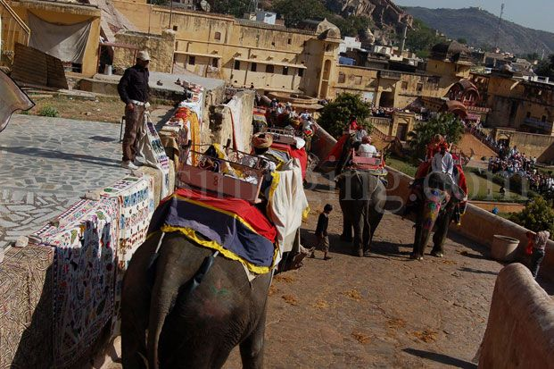 Tourists-elephant-rides-Amber-fort-Rajasthan