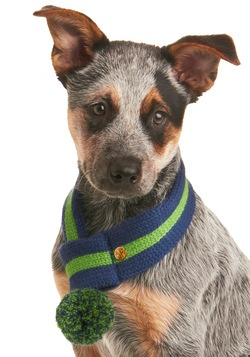 Chilled to the Bone Dog Scarf in Blue  modcloth.com $17.99   This is adorable!