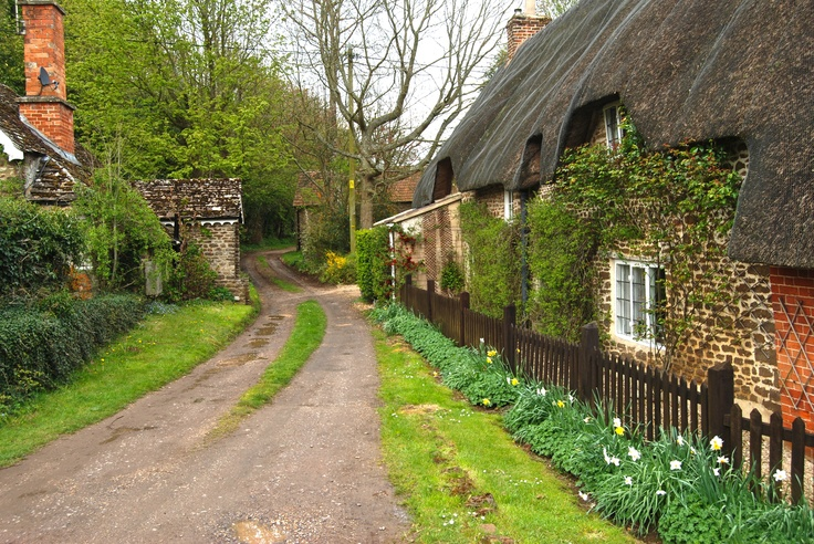 Thatched house and lane, Sandy Hook, Wiltshire, England