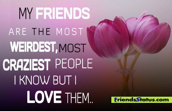 i love you friendship quotes - photo #35