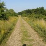 Pilgrimage Hungary 15