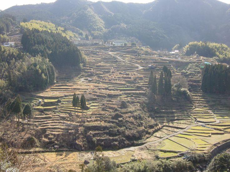 球磨村の風景 日本棚田100選