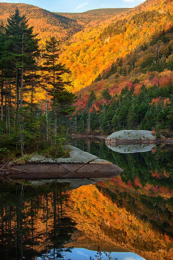 Dawns Foliage Reflection. New Hampshire .