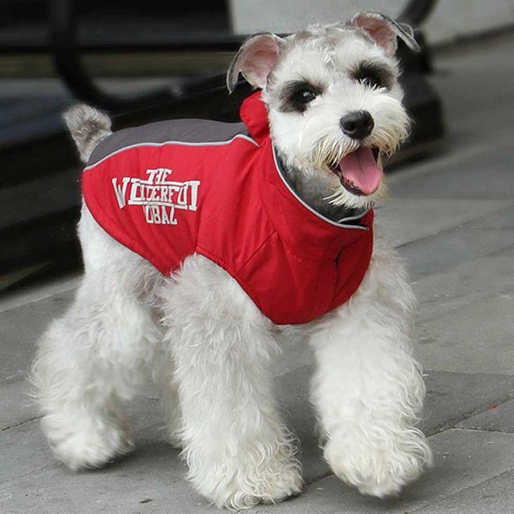 Winterregenjacke mit Reflexionstreifen ohne Ärmel Rot - Warme Hundejacke rot mit stark reflektierenden Streifen. Wasserfestes Hundegewand für den Winter gegen Wasser und Schnee. Sehr sportlicher Anorak für Hunde ohne Ärmel, damit die Bewegungsfreiheit nicht eingeschränkt ist. GogiPet ® Hundebekleidung bei Onlinezoo extra günstig statt
