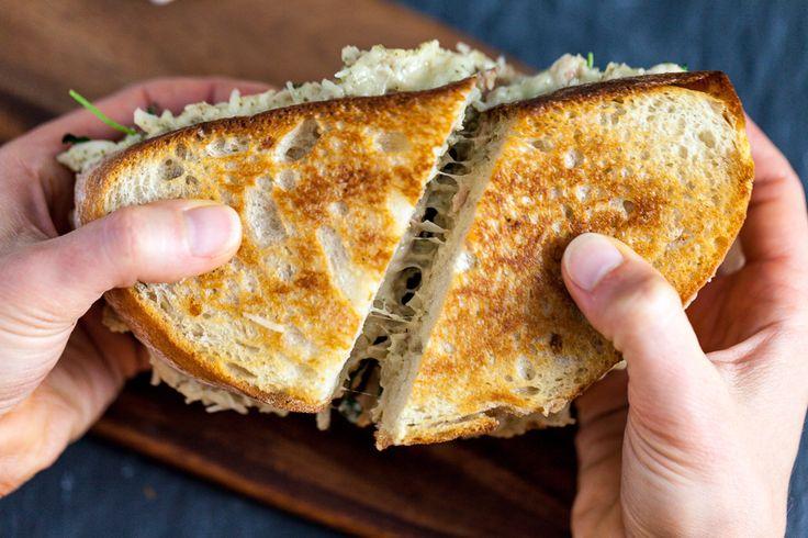Jackfruit Tuna Melt Sandwich » Keepin It Kind