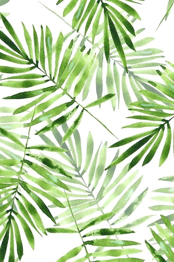 Palm Leaf Wallpaper 1119776 Backgrounds In 2019