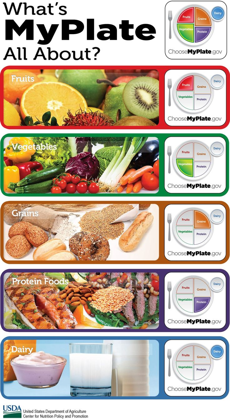 MyPlate teaches the 5 food groups: fruits, vegetables, grains, protein, and dairy.
