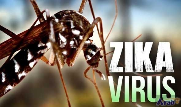 Vietnam's HCM City reports more Zika cases