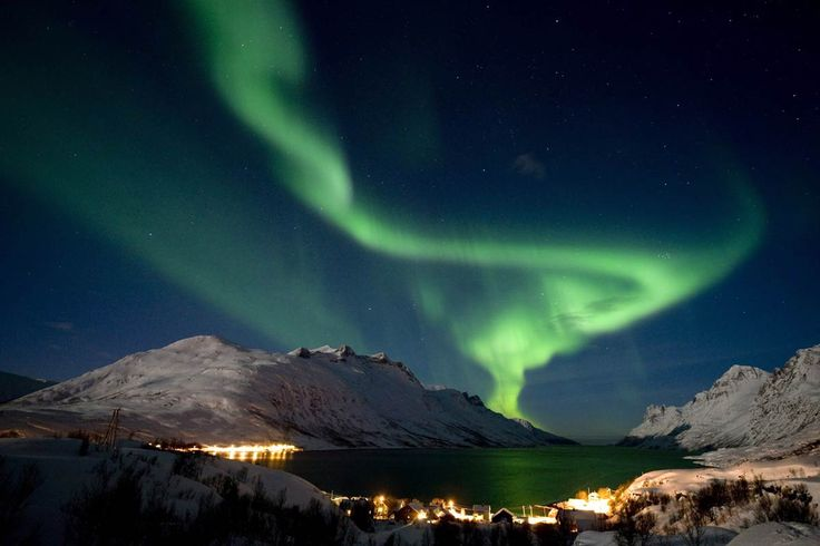 ECO Time: November 22 - Aurora View: Sled Dogs, Sky, Trav'Lin Lights, Northernlight, Beautiful, Aurora Borealis, Northern Lights, Travel, Northern Norway