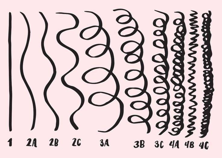 Best 20 Hair Type Chart Ideas On Pinterest Natural Hair