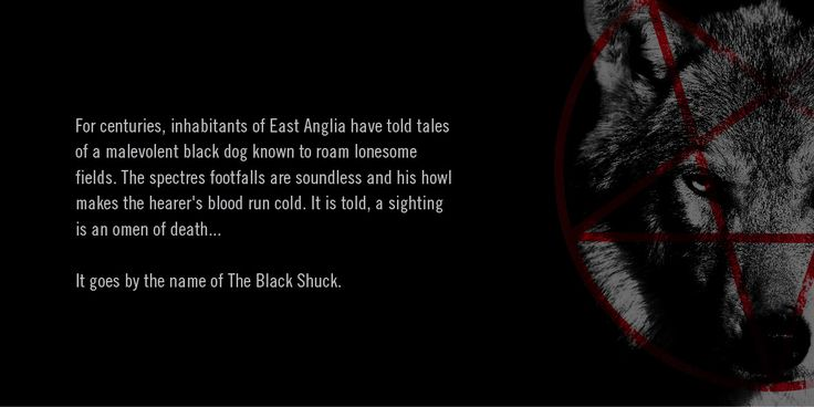 The Black Shuck Craft Beer. The story. Pentagram. Demon Dog. Designed by White is Black.