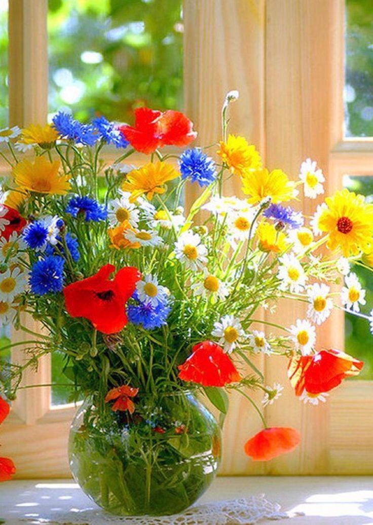 картинки солнечного утра с цветами однажды